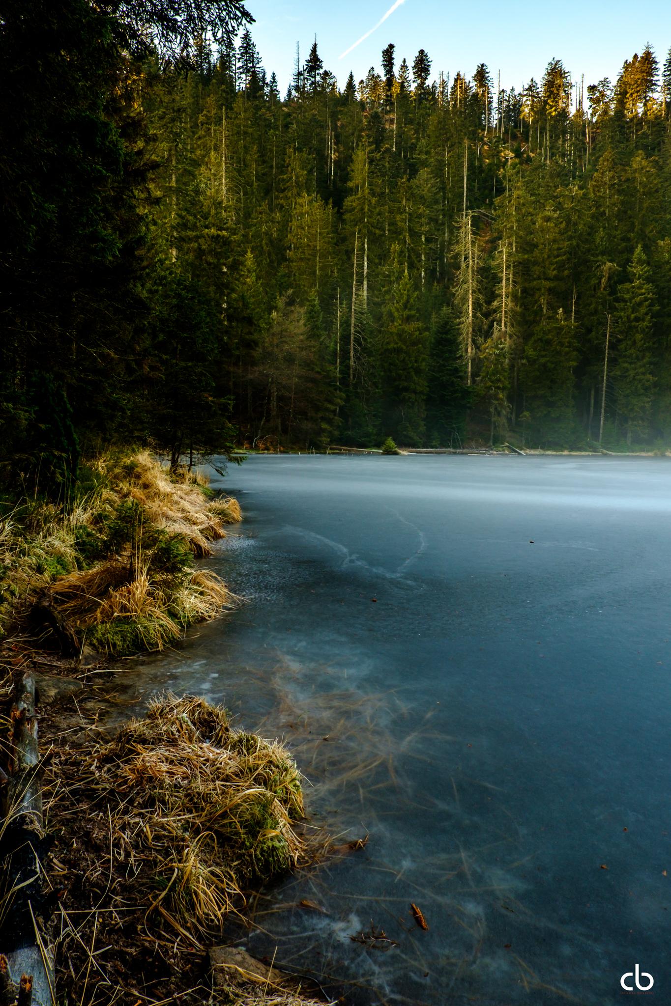 Im Schwarzwald am Wild See