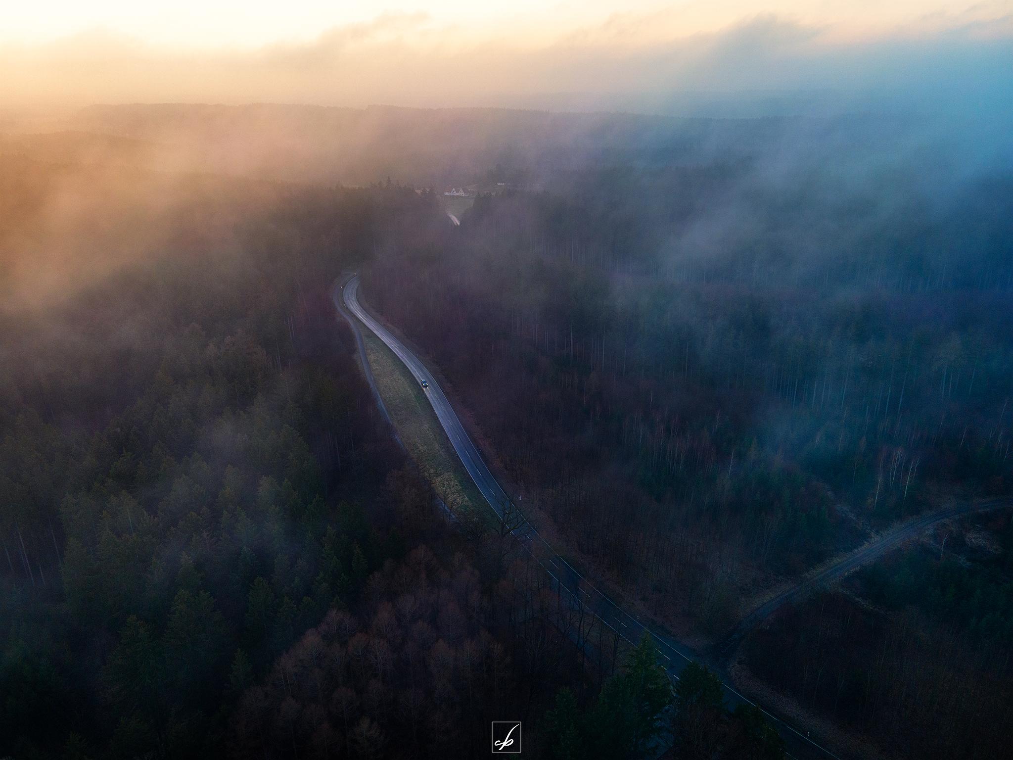 Morgens über dem Wald